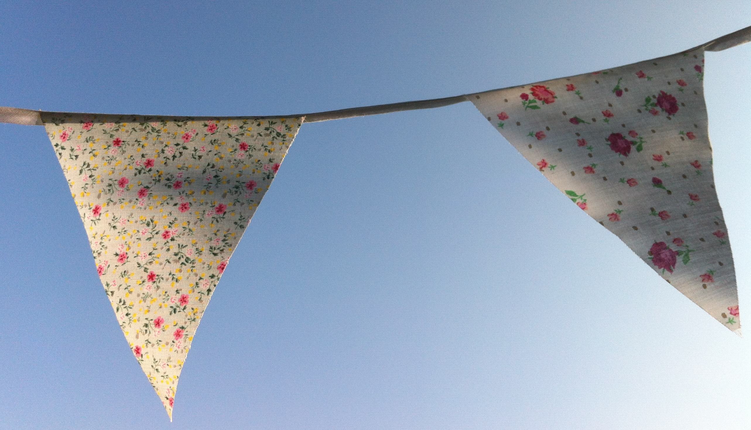 Bunting in summer (2)